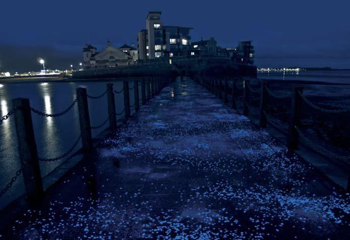 APPLICAZIONI fotoluminescenti 1