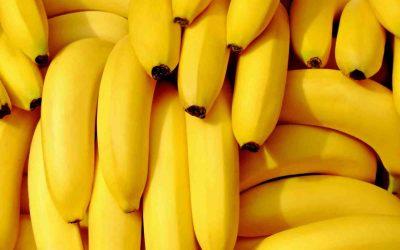 Dalle banane plastica sostenibile nelle Canarie